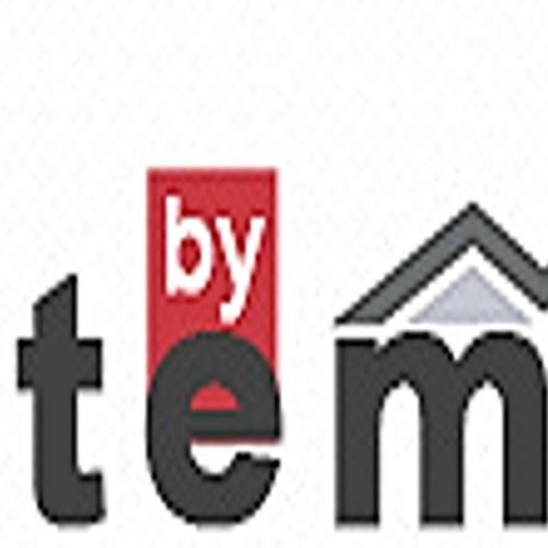 Эмблема компании Tem из Турции.